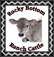 RBR Cattle